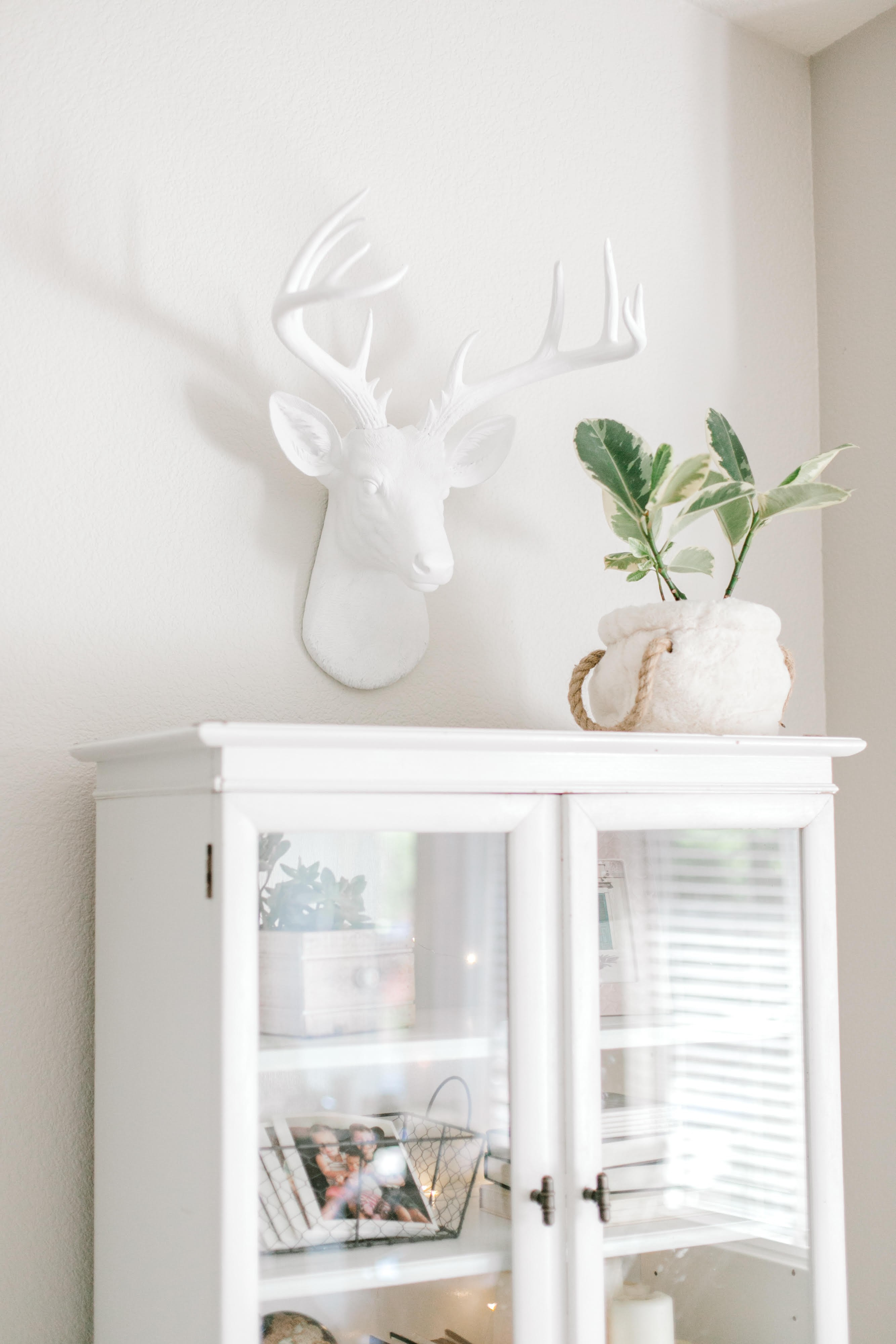 Large 14 Point Deer Head Wall Mount // White Intended For Large Deer Head Faux Taxidermy Wall Decor (View 12 of 30)