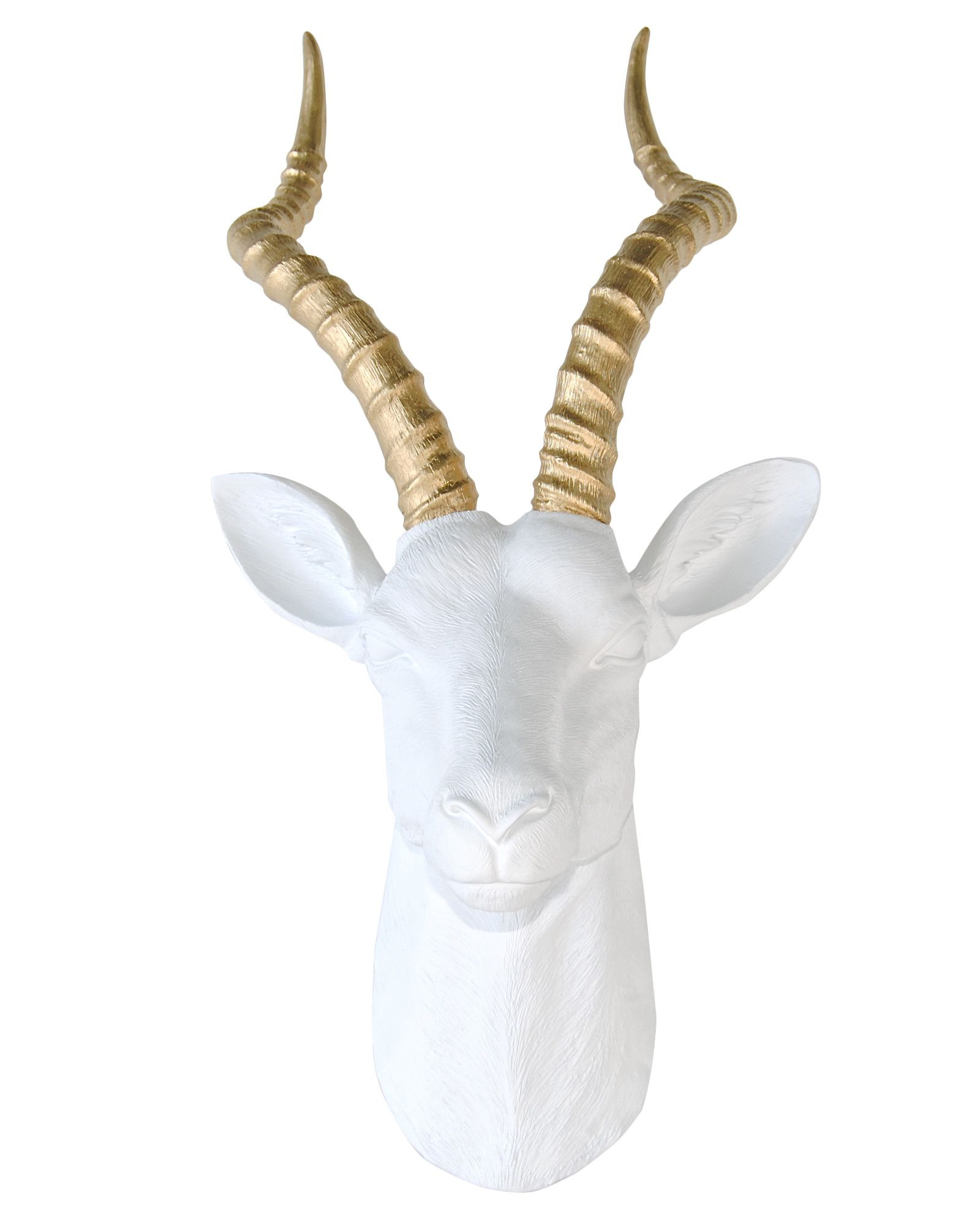 Large Antelope Head Wall Décor | Taxidermy | Faux Taxidermy regarding Atlantis Faux Taxidermy Wall Decor (Image 14 of 30)