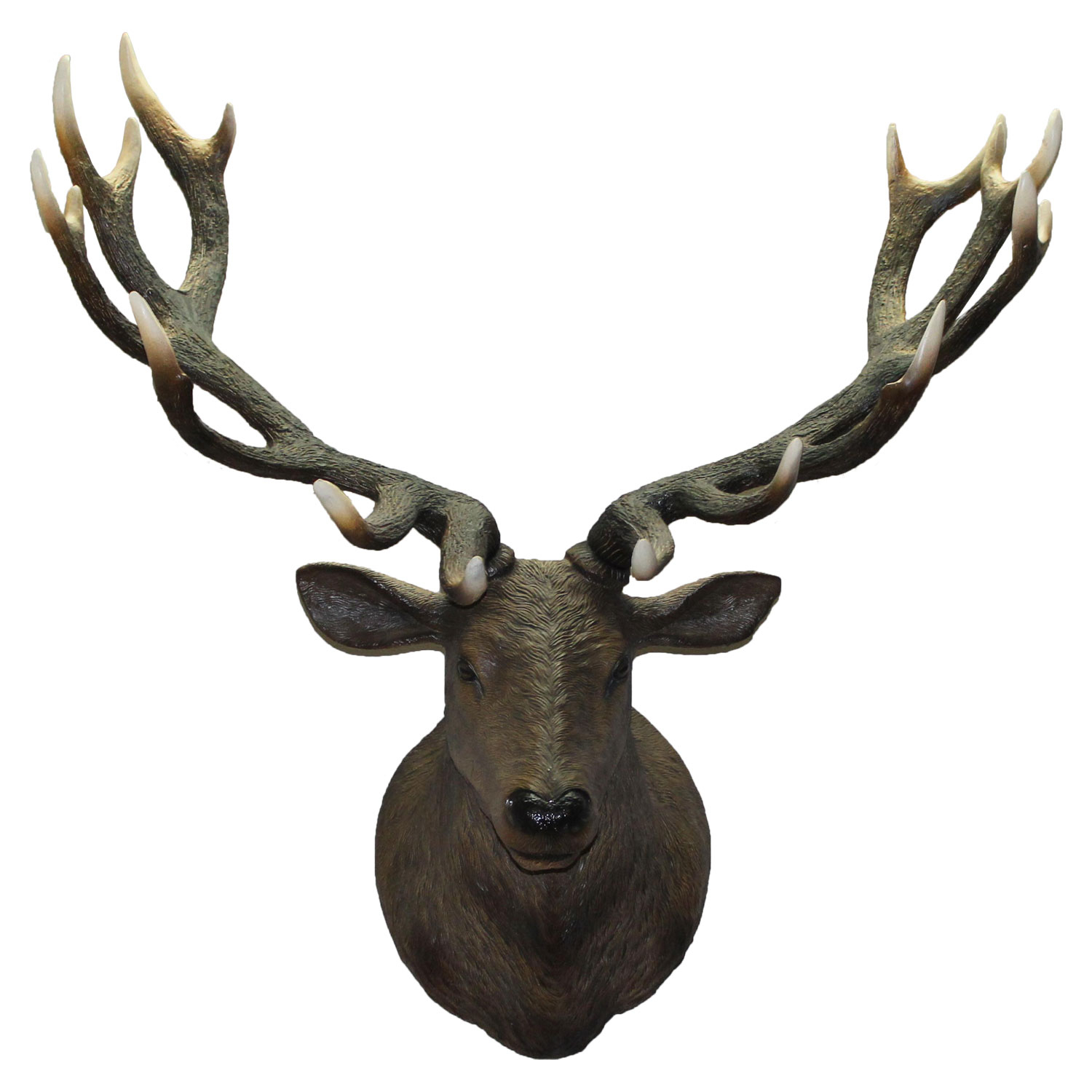 Life Size Big Deer Stag Wall Mount Faux Taxidermy Bust Head Rack Antlers Intended For Large Deer Head Faux Taxidermy Wall Decor (View 16 of 30)