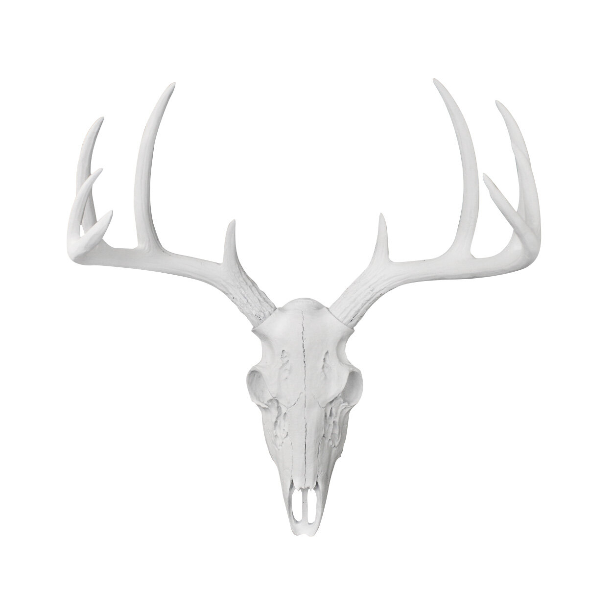 Mini Deer Head Skull Faux Taxidermy Wall Décor pertaining to Atlantis Faux Taxidermy Wall Decor (Image 18 of 30)