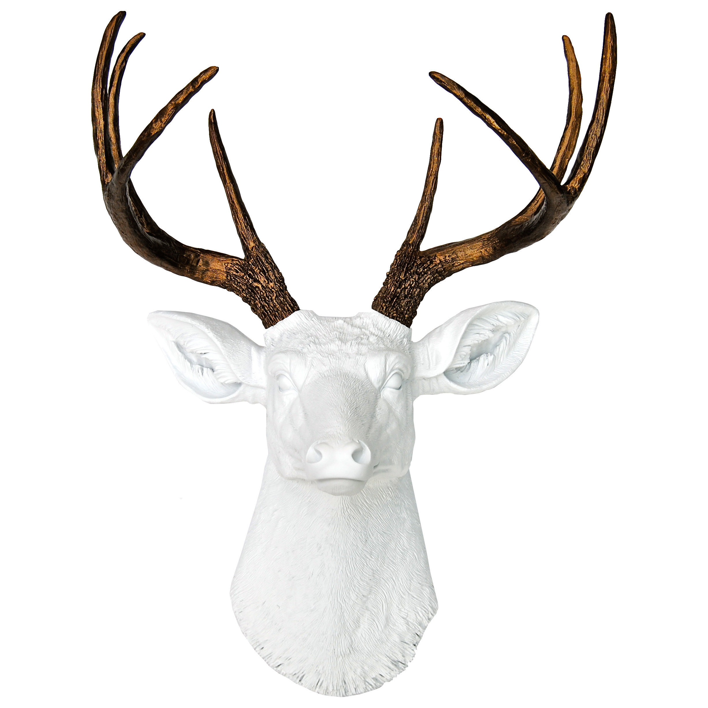 Featured Photo of Atlantis Faux Taxidermy Wall Decor