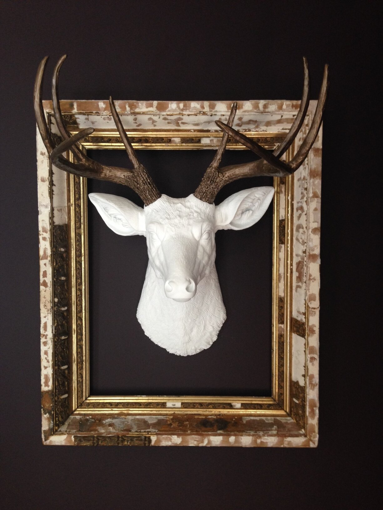 Near And Deer Atlantis Faux Taxidermy Wall Décor within Atlantis Faux Taxidermy Wall Decor (Image 21 of 30)