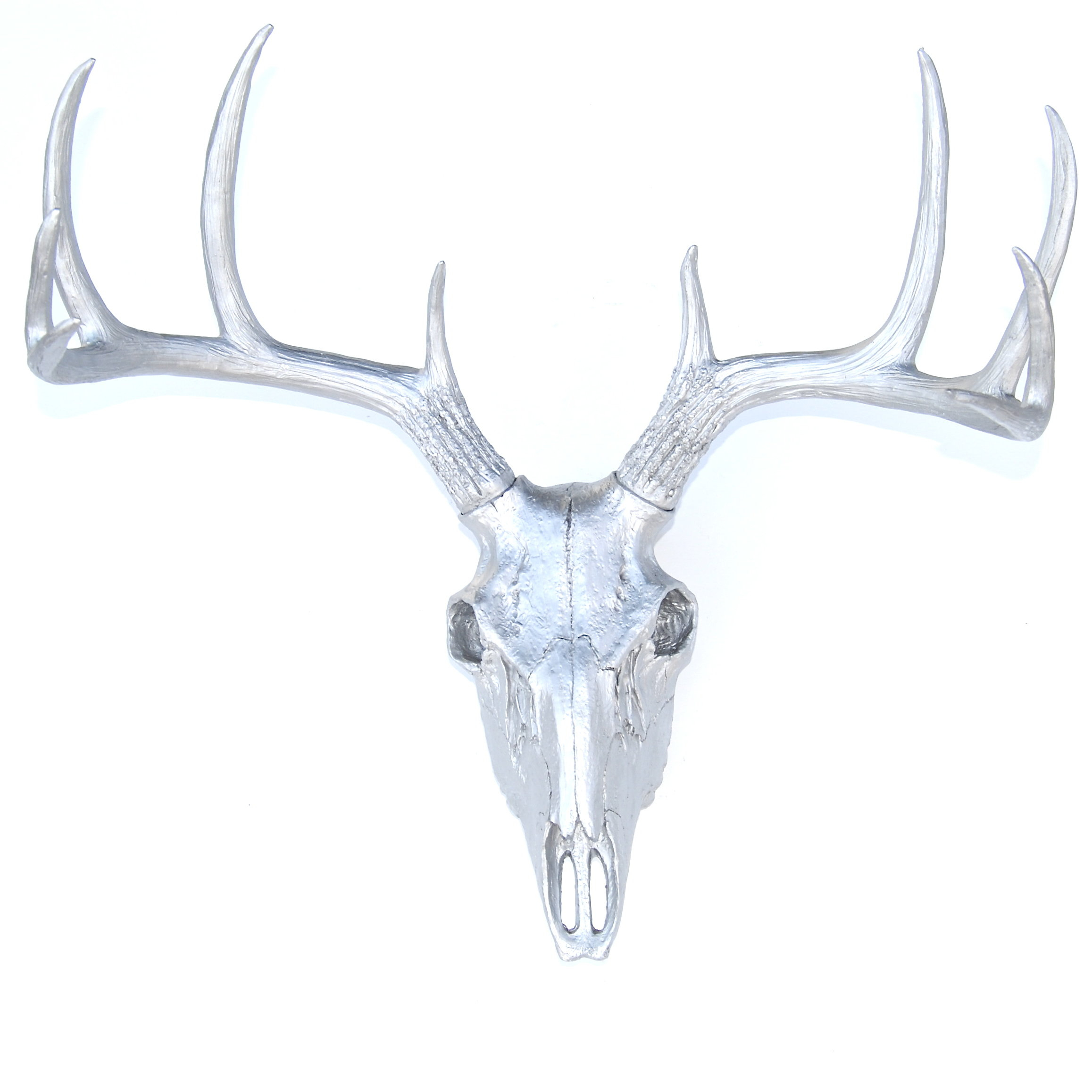Near And Deer Faux Taxidermy Buck Skull Wall Décor pertaining to Atlantis Faux Taxidermy Wall Decor (Image 22 of 30)