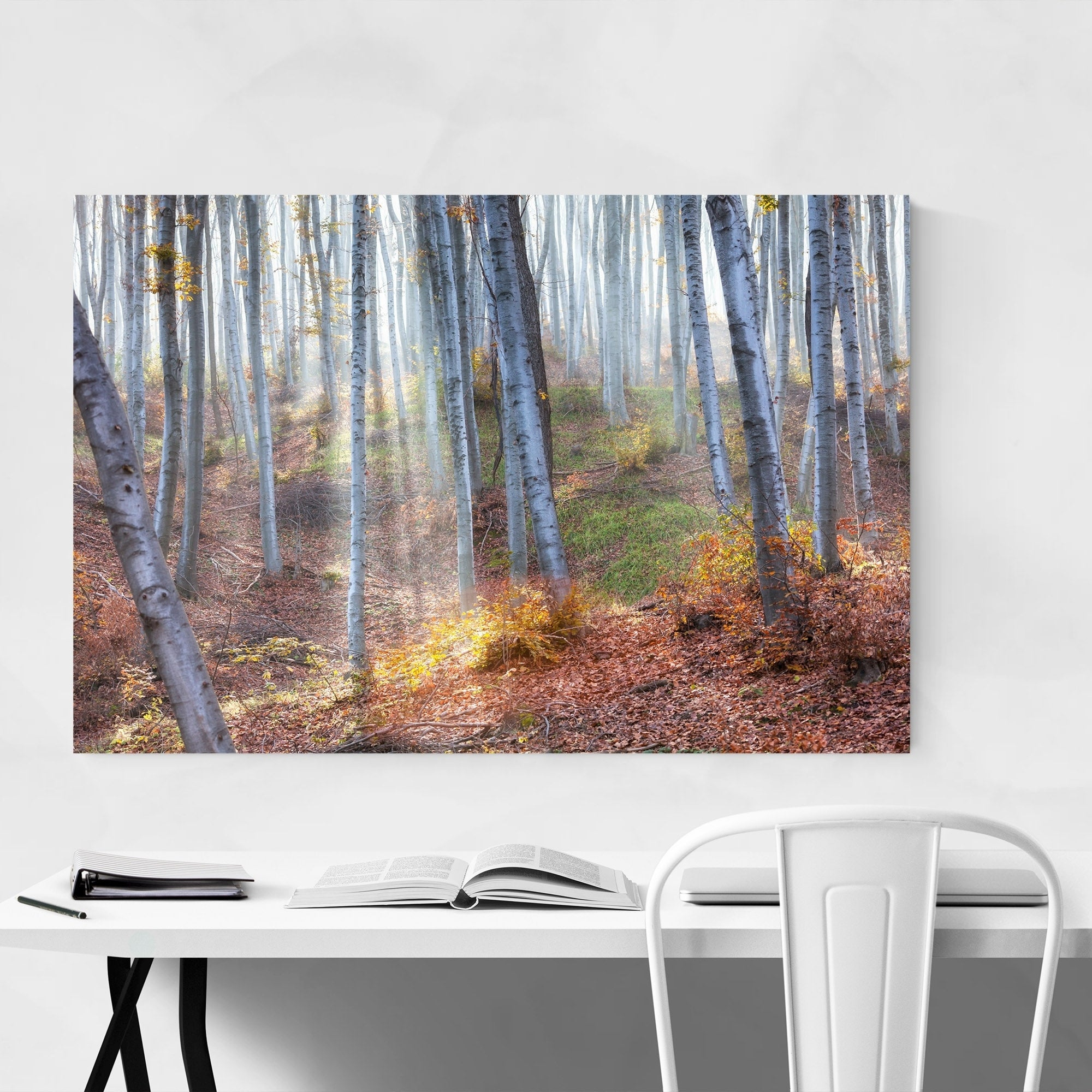 Noir Gallery 'between Fog And Sun'evgini Dinev Bulgaria Forest  Landscape Nature Metal Wall Art Print With Regard To Nature Metal Sun Wall Decor (View 13 of 30)