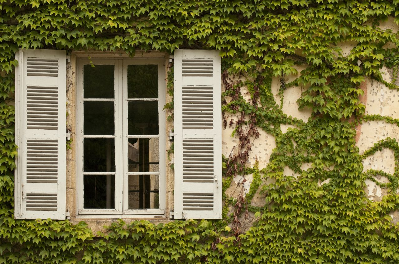 Outdoor Shutters: Décor Your Home Needs Intended For Shutter Window Hanging Wall Decor (View 23 of 30)
