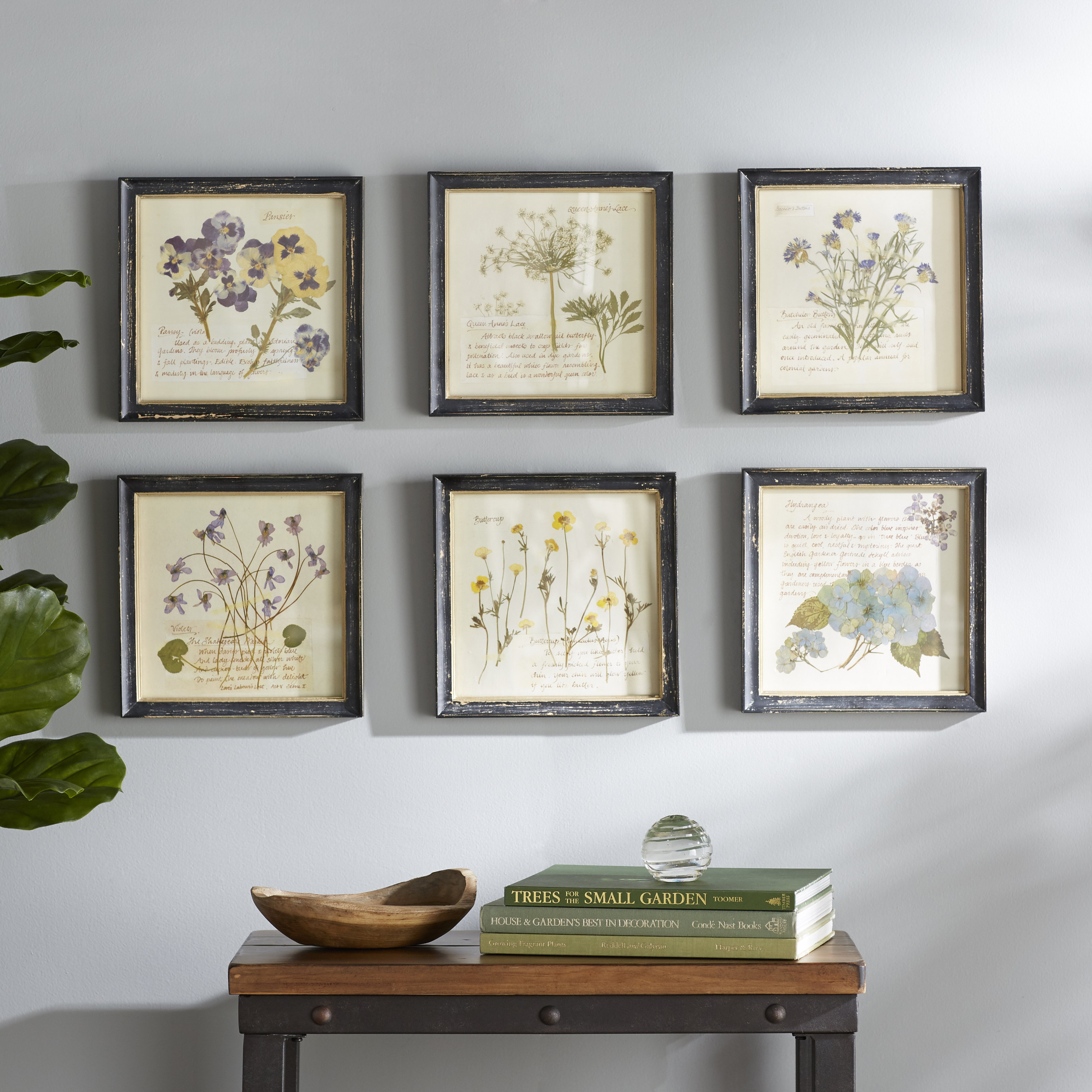 'pressed Flowers' 6 Piece Framed Graphic Art Print Set On Wood intended for 3 Piece Ceramic Flowers Wall Decor Sets (Image 1 of 30)