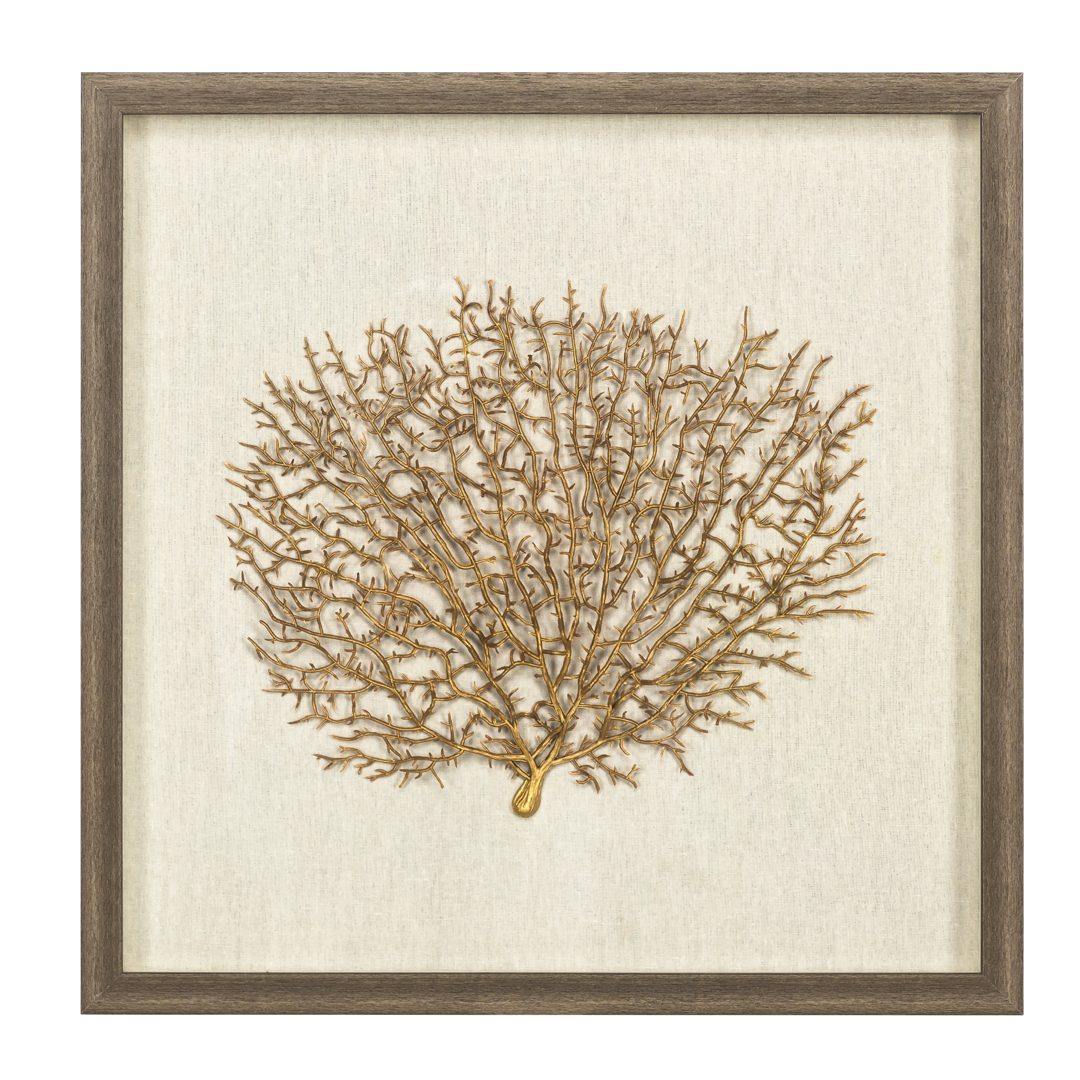 Sea Fan Wall Décor With Frame pertaining to Mariposa 9 Piece Wall Decor (Image 21 of 30)