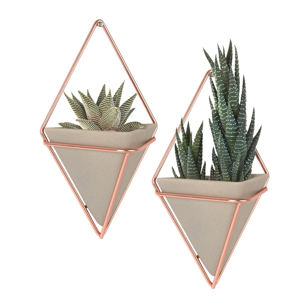 Trigg Small Copper Wall Planters - Set Of 2 with regard to 2 Piece Trigg Wall Decor Sets (Set of 2) (Image 16 of 30)