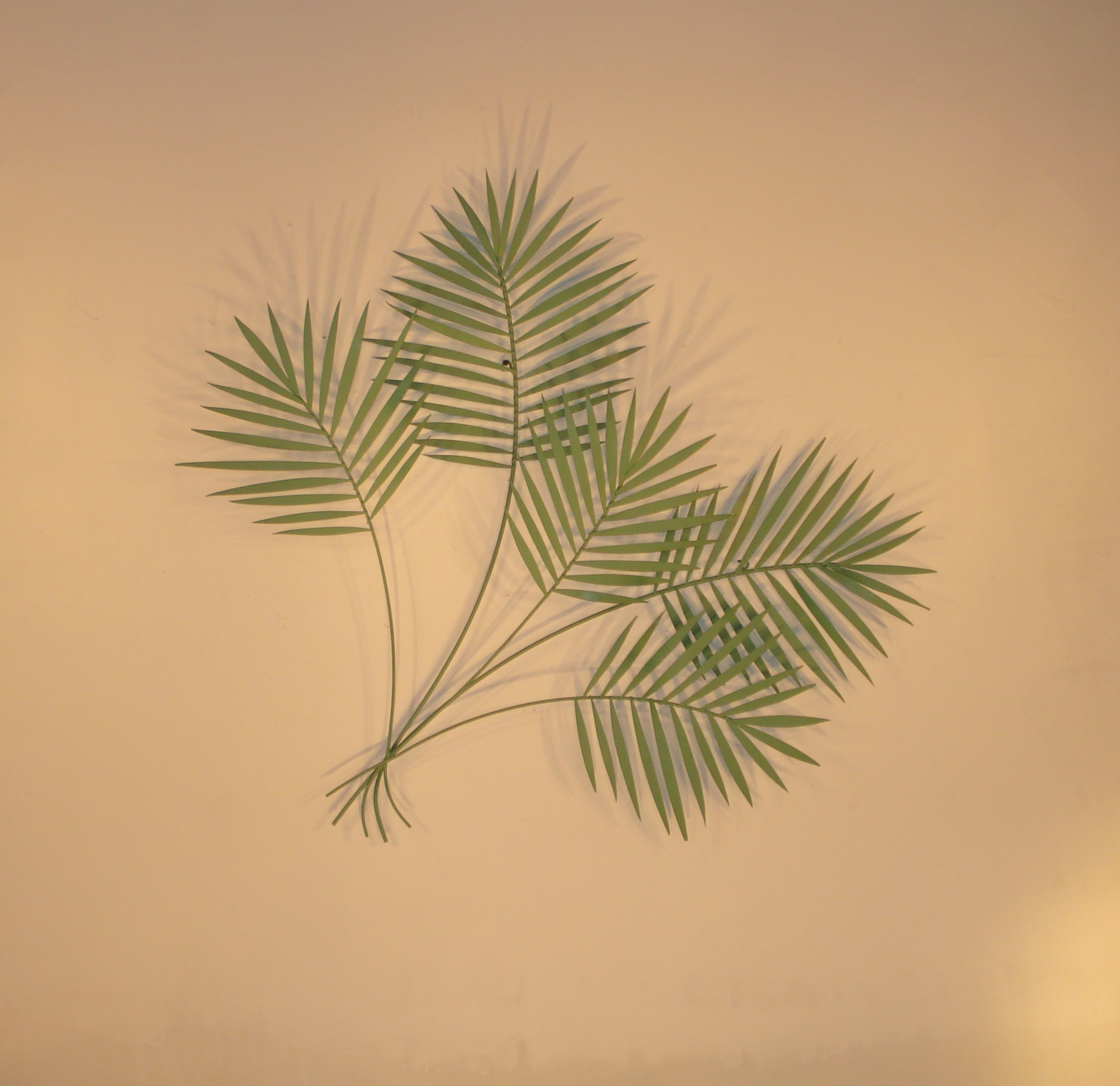 Tropical Metal Art, Wall Sculptures And Decor - Gurtan pertaining to Leaves Metal Sculpture Wall Decor (Image 30 of 30)