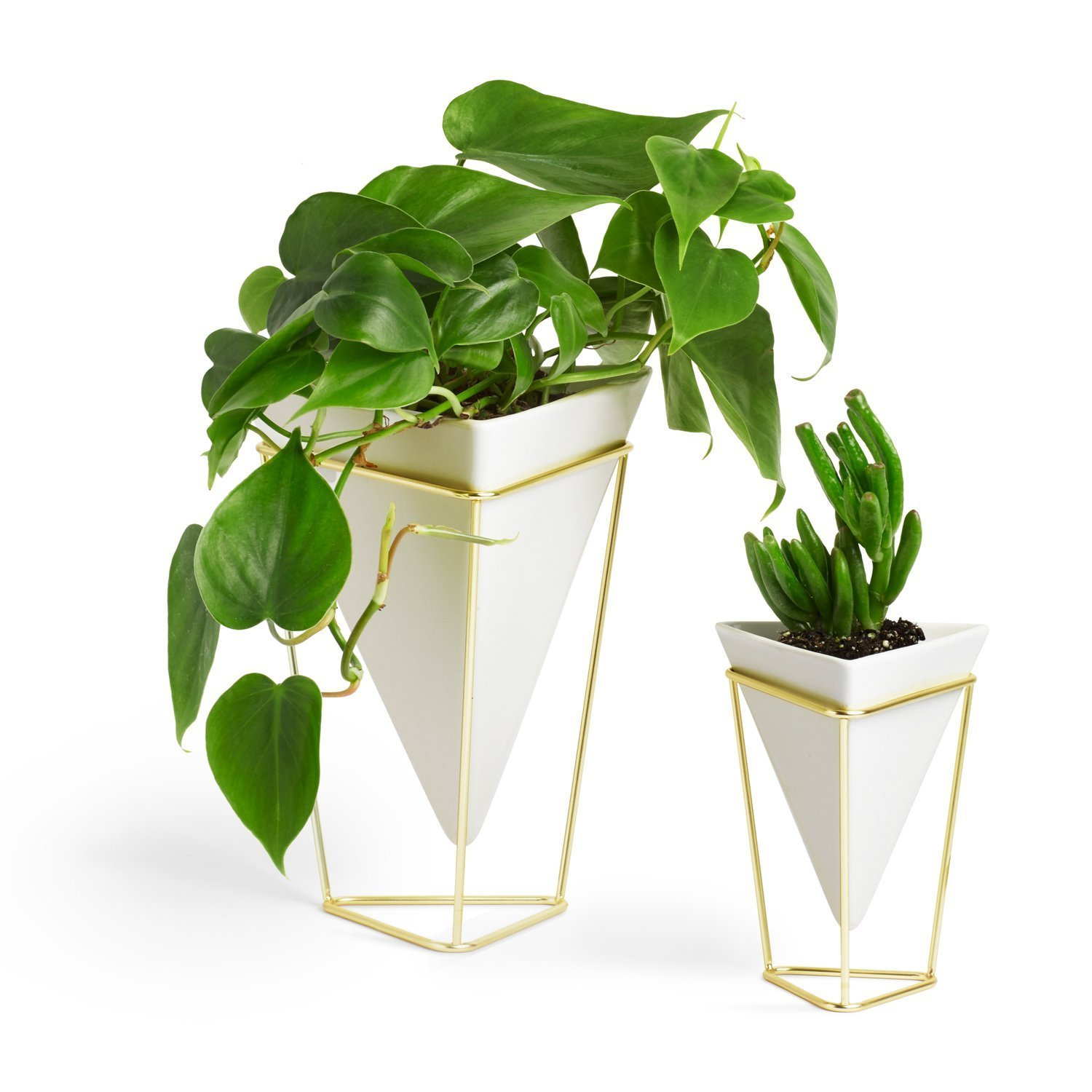 Umbra Trigg Desktop Planter Vase & Geometric Container – Great For Succulent Plants, Air Plant, Mini Cactus, Faux Plants And More, White Ceramic/brass Within Trigg Ceramic Planter Wall Decor (View 13 of 30)
