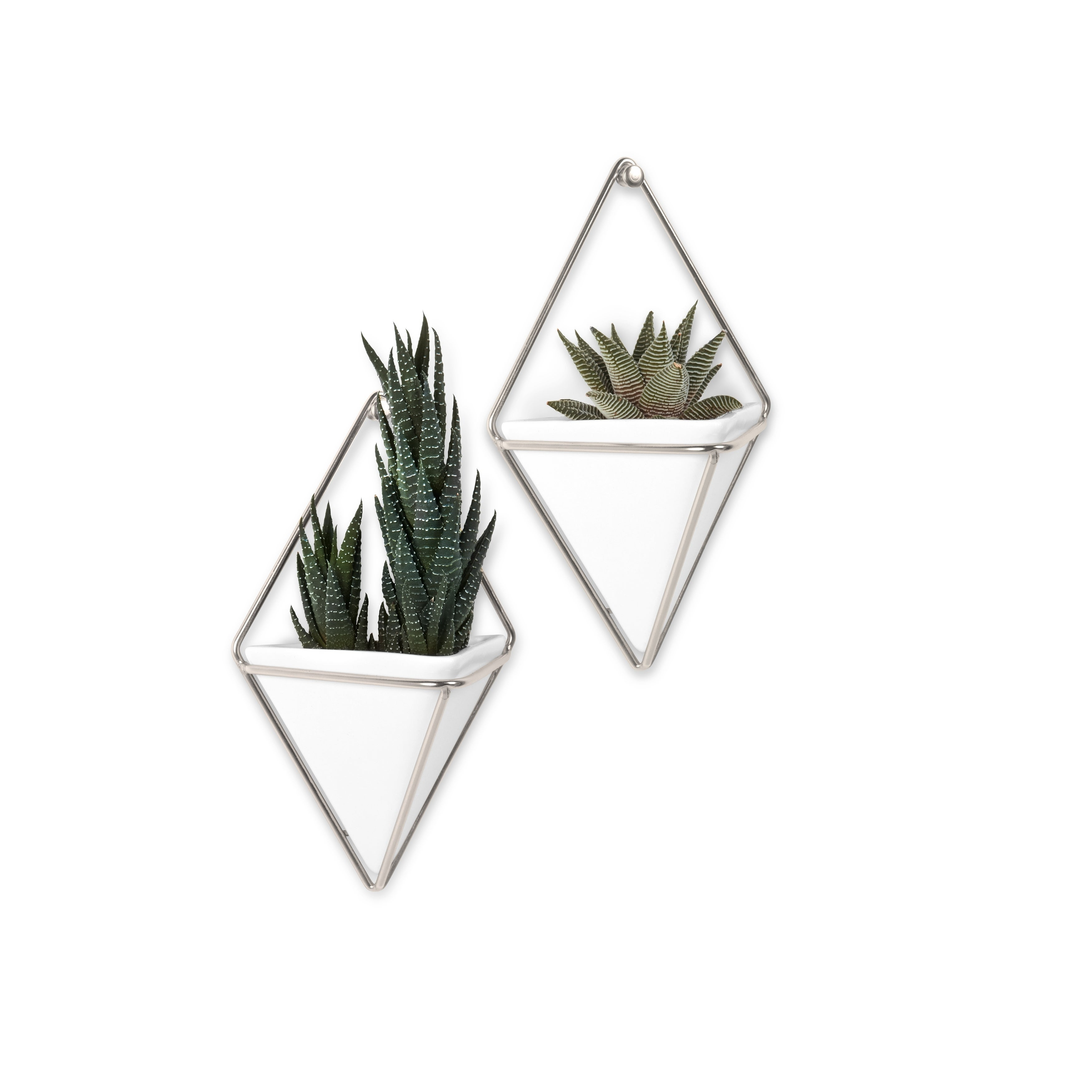 Umbra Trigg Hanging Planter & Wall Decor (Set Of 2) pertaining to 2 Piece Trigg Wall Decor Sets (Set of 2) (Image 23 of 30)