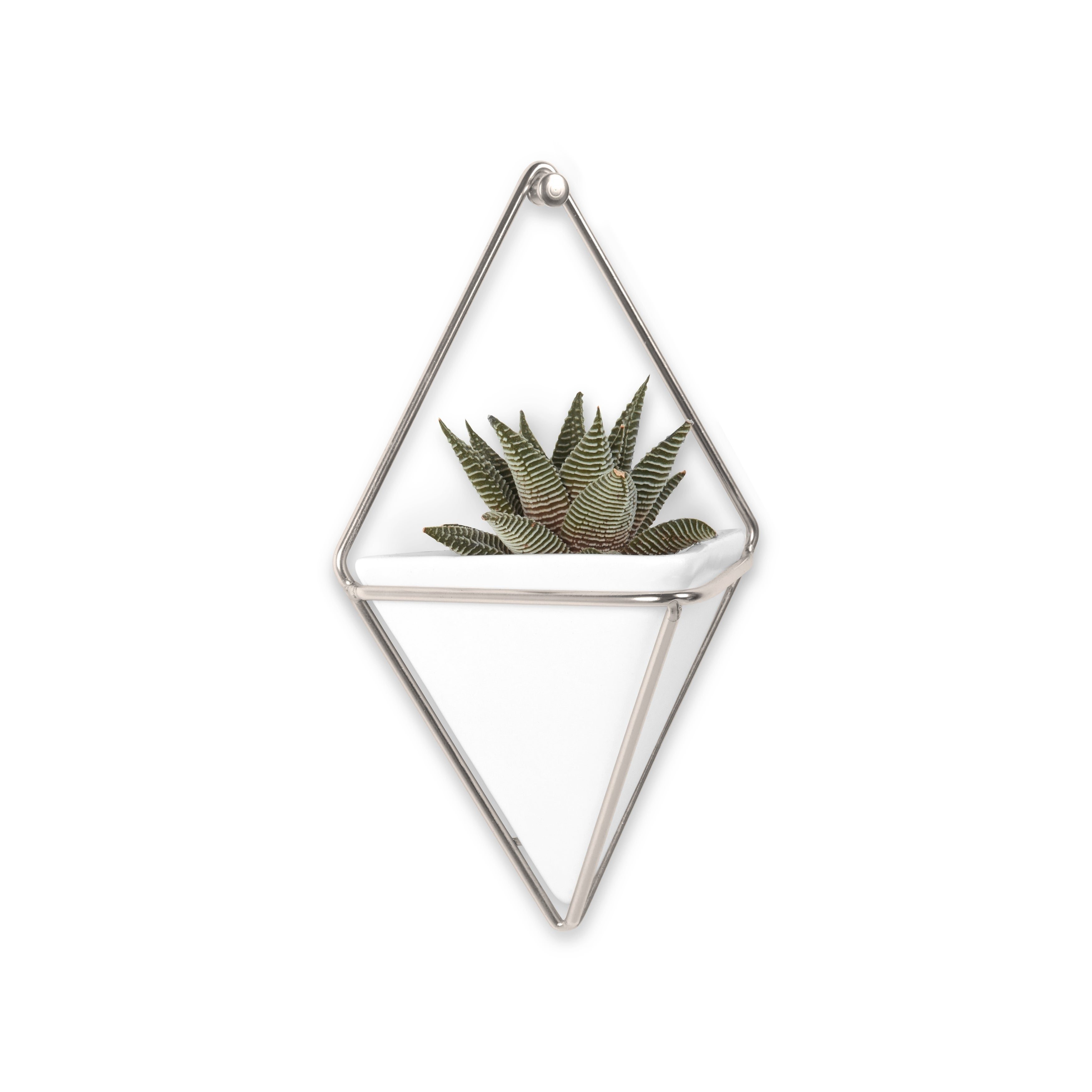 Umbra Trigg Hanging Planter & Wall Decor (Set Of 2) regarding 2 Piece Trigg Wall Decor Sets (Set Of 2) (Image 24 of 30)