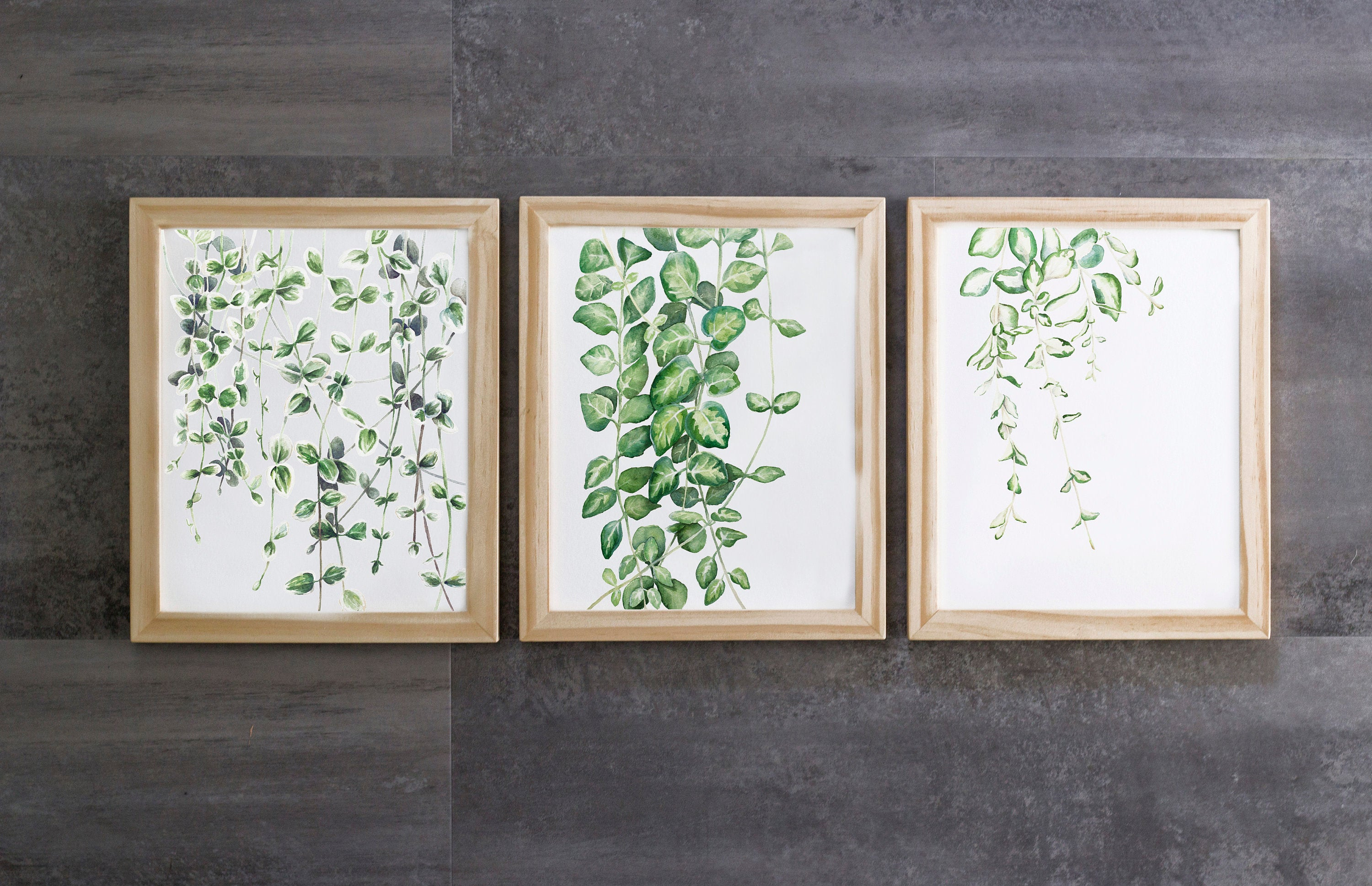 Vine Set Of 3, Greenery Watercolor Print Set, Botanical Wall Art, Home Decor, Plant Painting With Three Flowers On Vine Wall Decor (View 20 of 30)