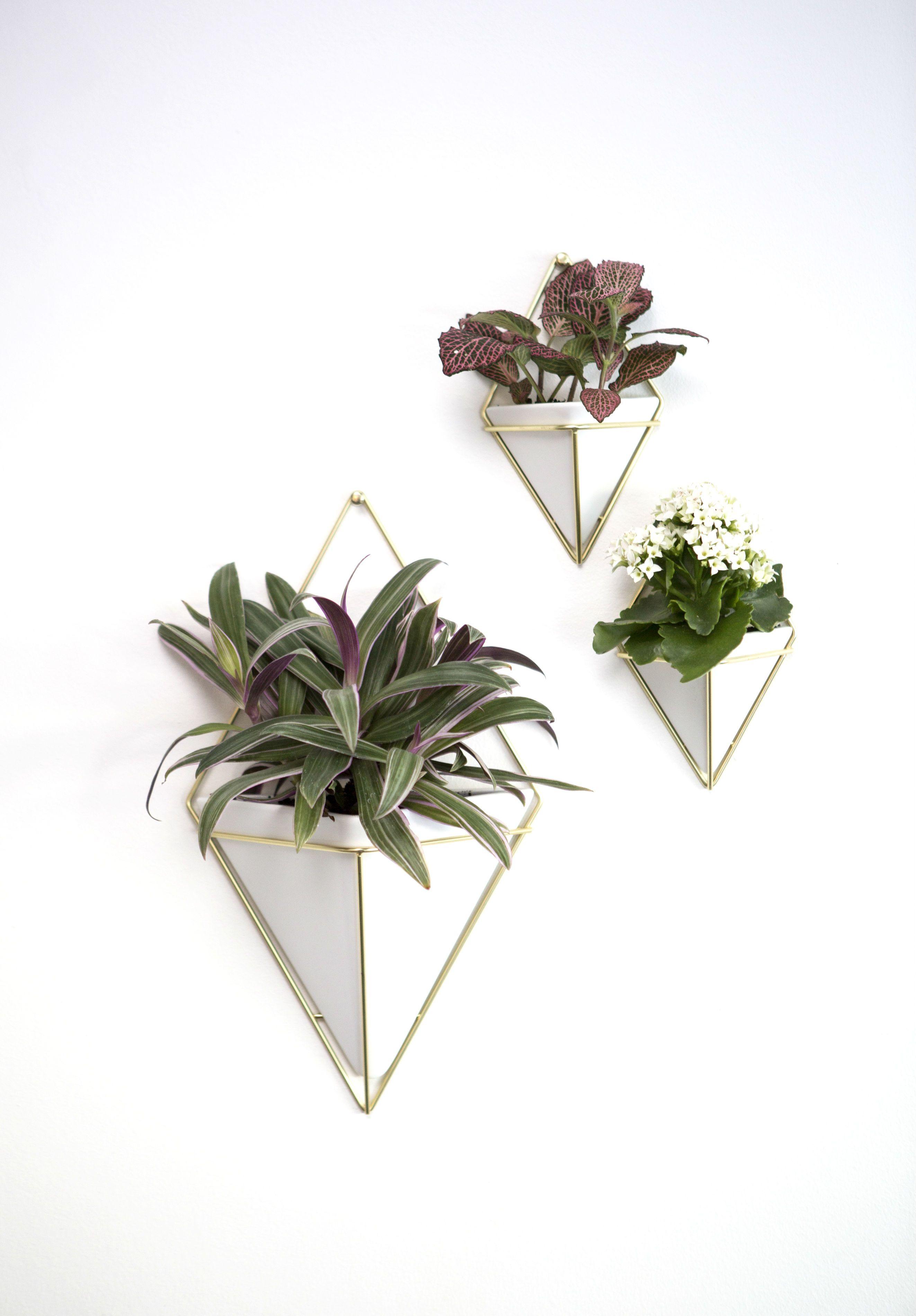 White Umbra Trigg Geometric Wall Planter Set | Decor with 2 Piece Trigg Wall Decor Sets (Set of 2) (Image 30 of 30)