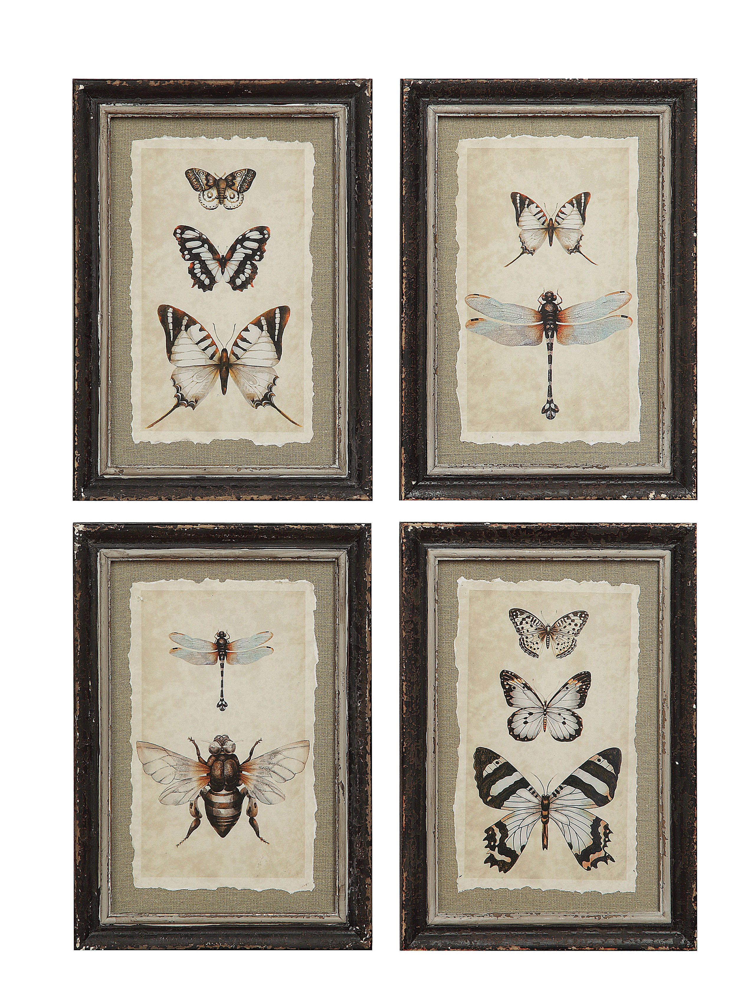 'wood Framed Vintage Insect Prints' 4 Piece Framed Graphic Art Print Set On Wood With 4 Piece Wall Decor Sets By Charlton Home (View 18 of 30)