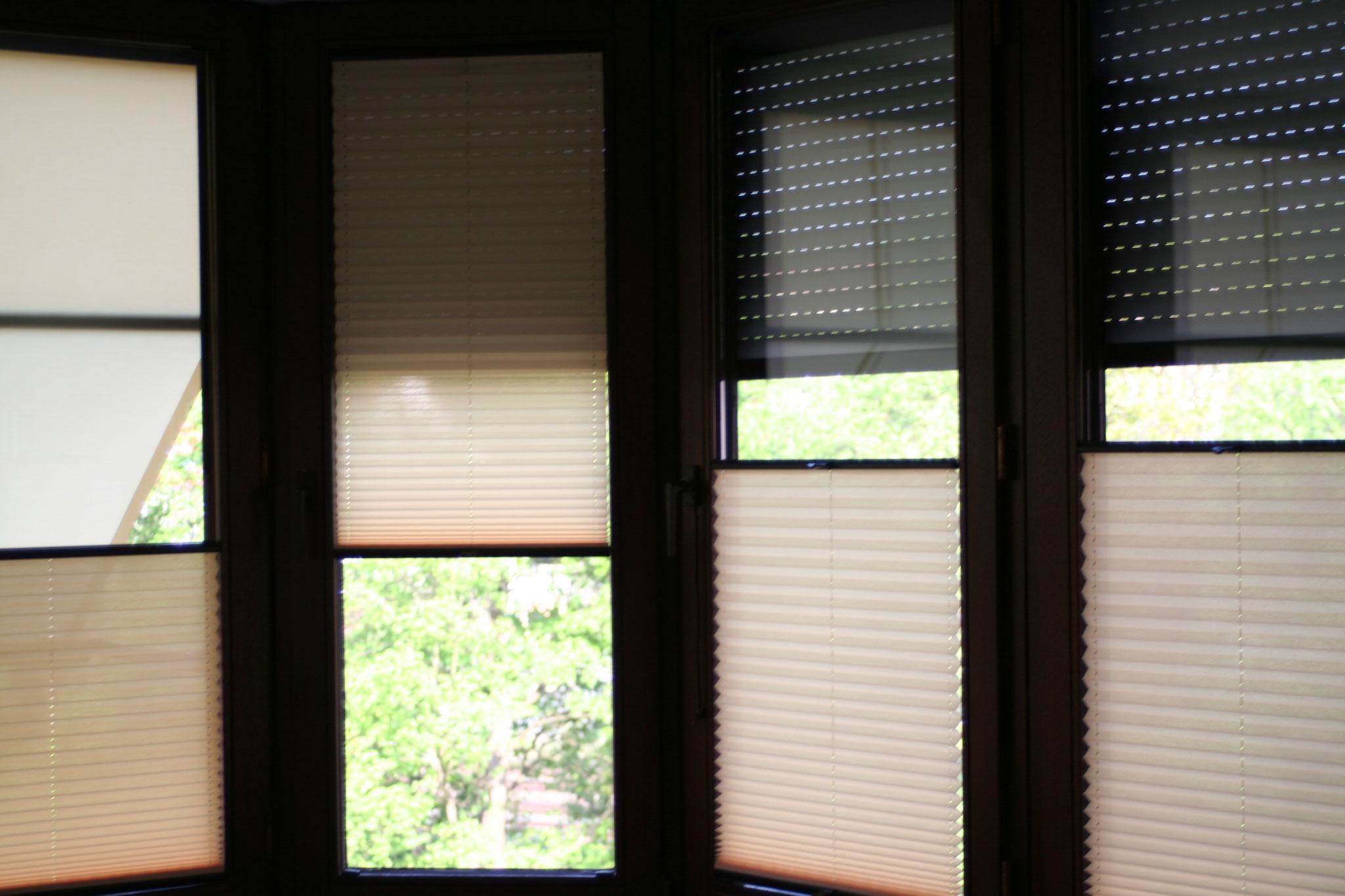 Plissees Nürnberg Von Sonnenschutz Heinikel/cosiflor/duette Within La Vida Window Curtains (View 12 of 20)