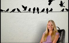 Birds on a Wire Wall Decor