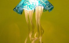 Jellyfish Pendant Lights