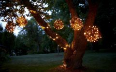 Hanging Outdoor Lights on Trees