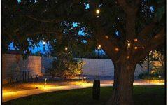 Outdoor Low Voltage Hanging Tree Lights