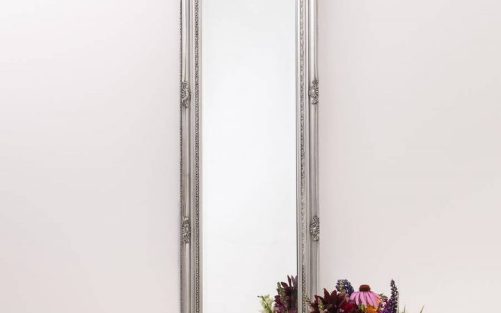 Silver Long Mirrors