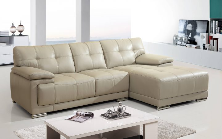 Small Scale Leather Sectional Sofas