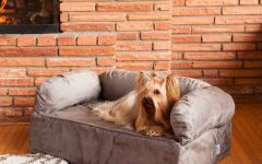 Snoozer Luxury Dog Sofas