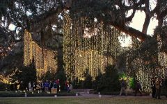 Hanging Outdoor Christmas Tree Lights