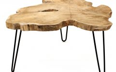 Wayfair Coffee Tables