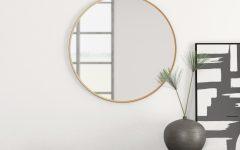 Yedinak Modern Distressed Accent Mirrors